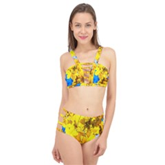 Yellow Maple Leaves Cage Up Bikini Set by FunnyCow
