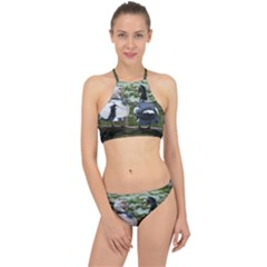 Muscovy Ducks At The Pond Racer Front Bikini Set