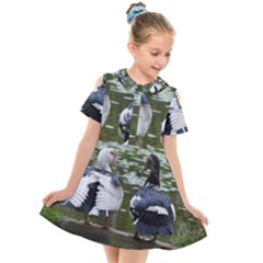 Muscovy Ducks At The Pond Kids  Short Sleeve Shirt Dress by IIPhotographyAndDesigns