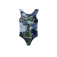 Muscovy Ducks At The Pond Kids  Frill Swimsuit