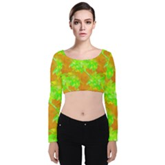 Coconut Palm Trees Caribbean Vibe Velvet Crop Top