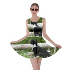 Farm Cat Skater Dress by IIPhotographyAndDesigns