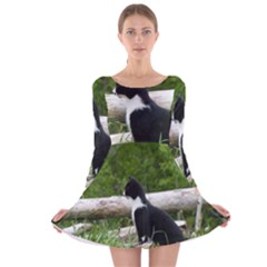 Farm Cat Long Sleeve Velvet Skater Dress by IIPhotographyAndDesigns