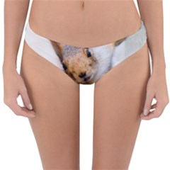 Curious Squirrel Reversible Hipster Bikini Bottoms by FunnyCow