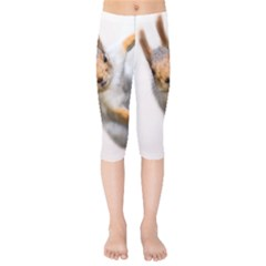 Curious Squirrel Kids  Capri Leggings  by FunnyCow