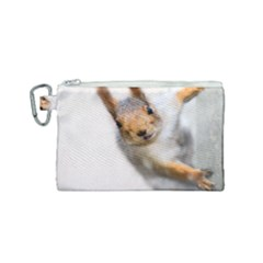 Curious Squirrel Canvas Cosmetic Bag (small)