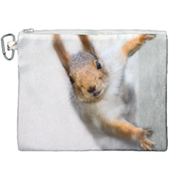Curious Squirrel Canvas Cosmetic Bag (xxxl) by FunnyCow