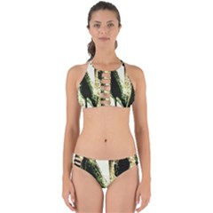 There Is No Promissed Rain 2 Perfectly Cut Out Bikini Set