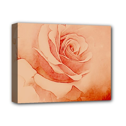 Wonderful Rose In Soft Colors Deluxe Canvas 14  X 11  by FantasyWorld7