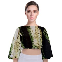 There Is No Promissed Rain 2 Tie Back Butterfly Sleeve Chiffon Top by bestdesignintheworld