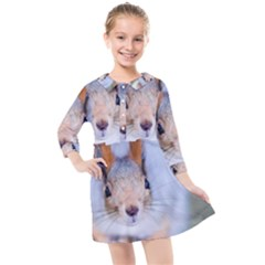 Squirrel Looks At You Kids  Quarter Sleeve Shirt Dress
