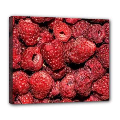 Red Raspberries Deluxe Canvas 24  X 20   by FunnyCow