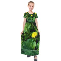 Yellow Dandelion Flowers In Spring Kids  Short Sleeve Maxi Dress