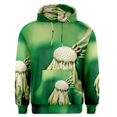 Dandelion Flower Green Chief Men s Pullover Hoodie by FunnyCow