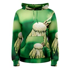 Dandelion Flower Green Chief Women s Pullover Hoodie by FunnyCow