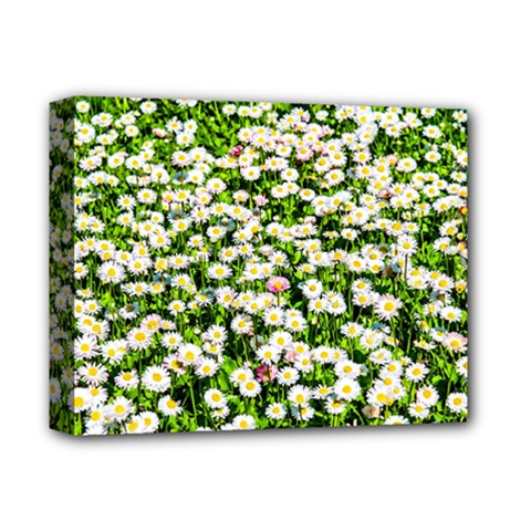 Green Field Of White Daisy Flowers Deluxe Canvas 14  X 11  by FunnyCow
