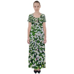 Green Field Of White Daisy Flowers High Waist Short Sleeve Maxi Dress