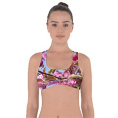 Crab Apple Blossoms Got No Strings Sports Bra by FunnyCow