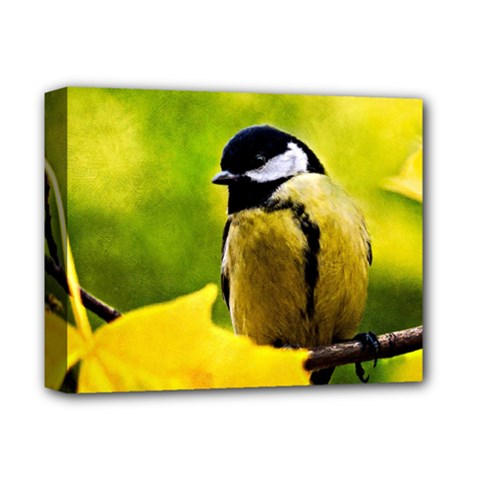Tomtit Bird Dressed To The Season Deluxe Canvas 14  X 11  by FunnyCow