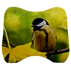Tomtit Bird Dressed To The Season Velour Head Support Cushion by FunnyCow