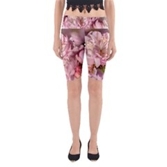 Beautiful Flowering Almond Yoga Cropped Leggings by FunnyCow