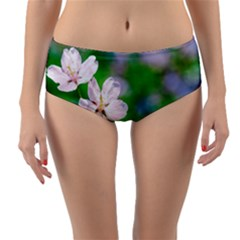 Sakura Flowers On Green Reversible Mid-waist Bikini Bottoms by FunnyCow