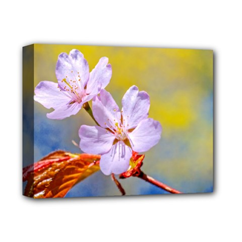 Sakura Flowers On Yellow Deluxe Canvas 14  X 11  by FunnyCow
