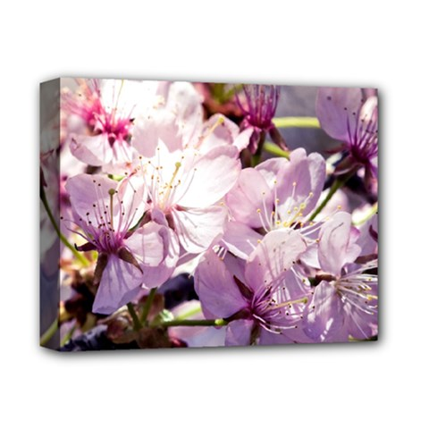Sakura In The Shade Deluxe Canvas 14  X 11  by FunnyCow