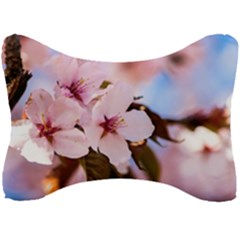 Three Sakura Flowers Seat Head Rest Cushion by FunnyCow
