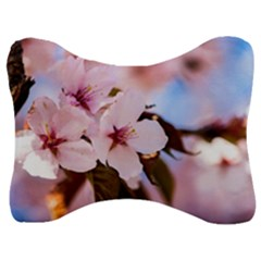 Three Sakura Flowers Velour Seat Head Rest Cushion by FunnyCow