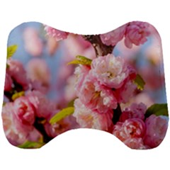 Flowering Almond Flowersg Head Support Cushion by FunnyCow