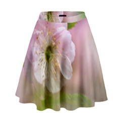 Single Almond Flower High Waist Skirt by FunnyCow