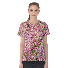 Almond Tree In Bloom Women s Cotton Tee by FunnyCow