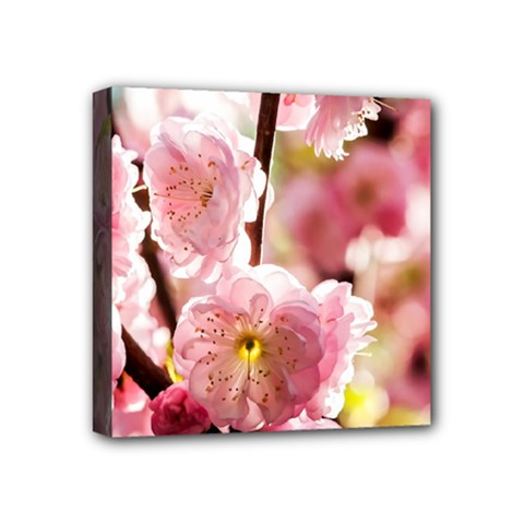 Blooming Almond At Sunset Mini Canvas 4  X 4  by FunnyCow