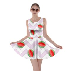 Watermelon Chevron Skater Dress