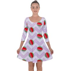 Watermelon Chevron Quarter Sleeve Skater Dress