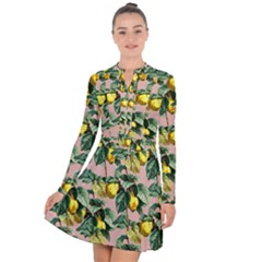 Fruit Branches Long Sleeve Panel Dress