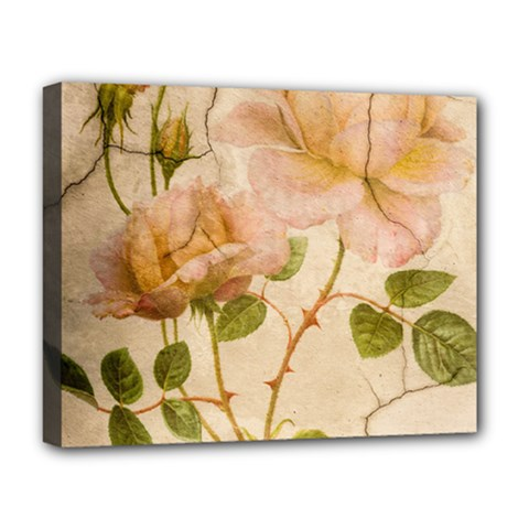 Rose Flower 2507641 1920 Deluxe Canvas 20  X 16   by vintage2030