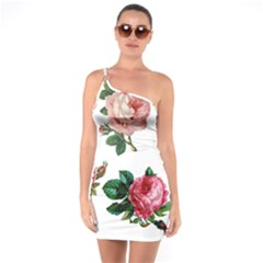 Roses 1770165 1920 One Soulder Bodycon Dress
