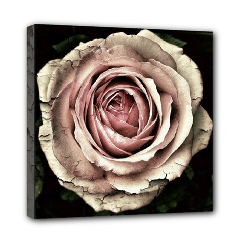 Vintage Rose Mini Canvas 8  X 8  (stretched) by vintage2030