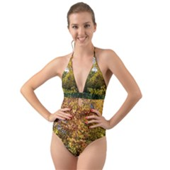 Vermont Fall Trees Side Halter Cut Out One Piece Swimsuit