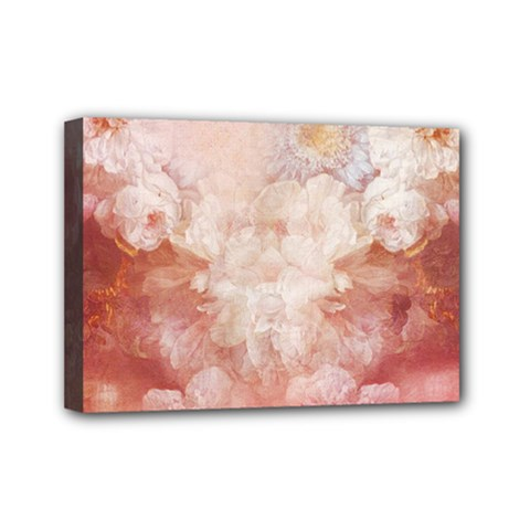 Floral 2555372 960 720 Mini Canvas 7  X 5  (stretched) by vintage2030