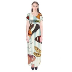 Butterfly 1064147 960 720 Short Sleeve Maxi Dress
