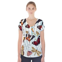 Butterfly 1064147 960 720 Short Sleeve Front Detail Top