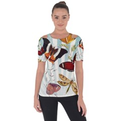 Butterfly 1064147 960 720 Short Sleeve Top