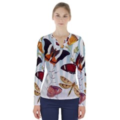 Butterfly 1064147 960 720 V Neck Long Sleeve Top