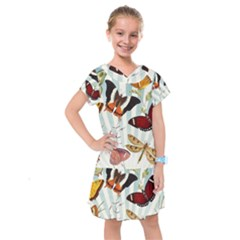 Butterfly 1064147 960 720 Kids  Drop Waist Dress