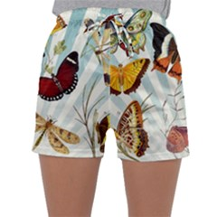 Butterfly 1064147 960 720 Sleepwear Shorts