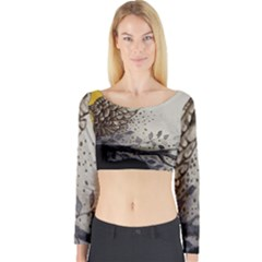 Owl 1462736 1920 Long Sleeve Crop Top by vintage2030