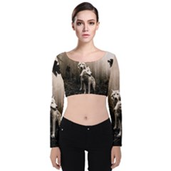 Wolfs Velvet Crop Top